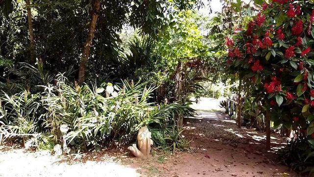 217B/Fazenda Haras de 17 ha com estrutura espetacular e muita beleza e bem localizada - Foto 6
