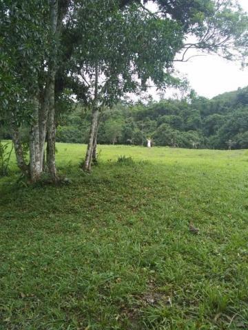 Terreno à venda em Parque veneza, Cachoeiras de macacu cod:TE0116 - Foto 12