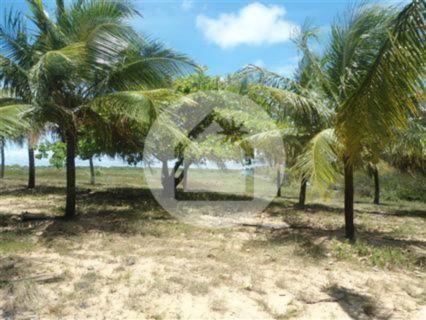 Terreno à venda em Muriú, Ceará-mirim cod:708001