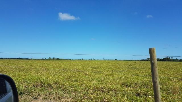Maravilhosa Fazenda em Barrolândia, Belmonte - BA com 809 Hectares... - Foto 3
