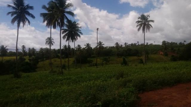 Excelente propriedade de 4 hectares, em Dois Leões, Pombos-PE - Foto 3