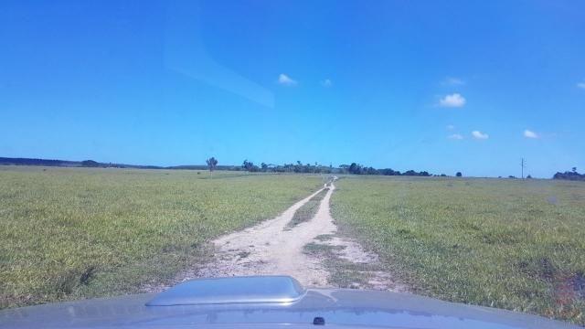 Maravilhosa Fazenda em Barrolândia, Belmonte - BA com 809 Hectares... - Foto 13