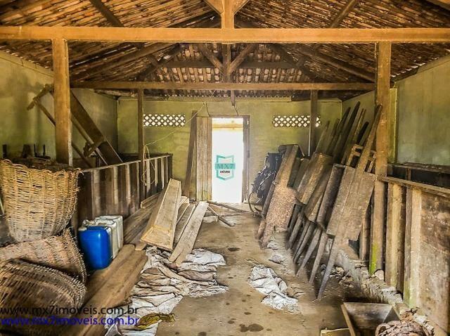 Fazenda mista de cacau e gado. Área de 203 Hectares - Foto 7