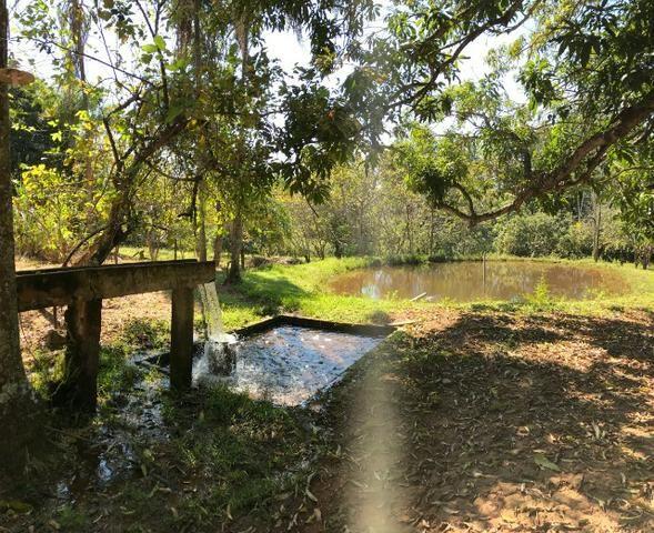Fazenda 16.5 Alqueires ( 80 ha) Aragoiânia-GO - Foto 6