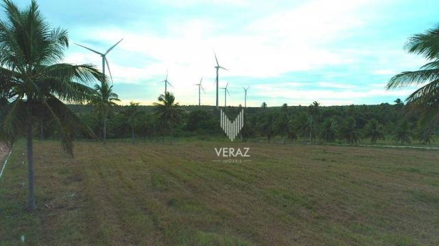 Terreno à venda, 300m² por r$ 22.000,00 - trairi - ceará - trairi/ce - Foto 12