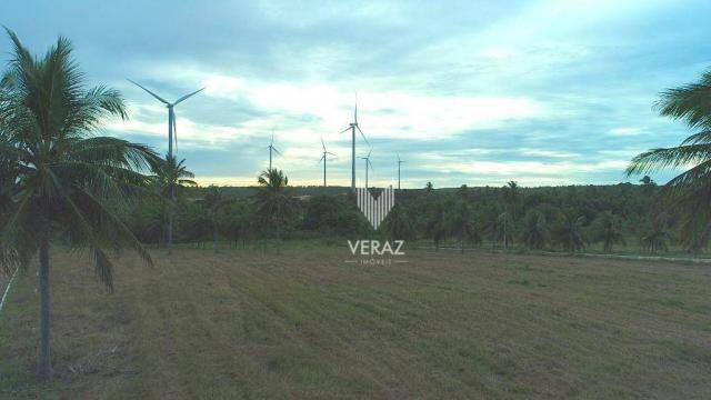 Terreno à venda, 300m² por r$ 22.000,00 - trairi - ceará - trairi/ce - Foto 11