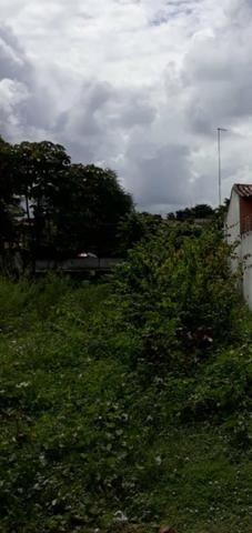 Lote em Maracaípe- Excelente metragem e localização!! Preço único!! - Foto 2
