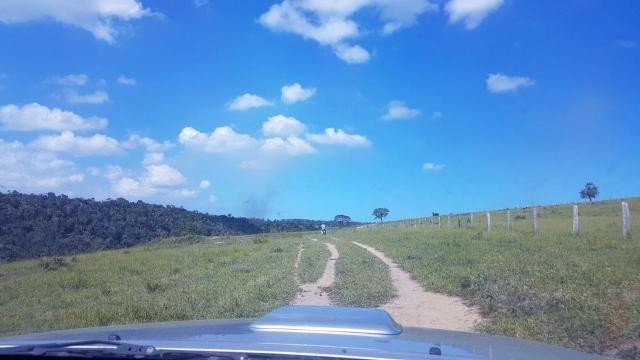 Maravilhosa Fazenda em Barrolândia, Belmonte - BA com 809 Hectares... - Foto 18