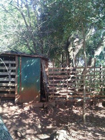 Vende-se chácara em Cruz Alta  - Foto 6