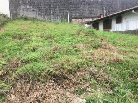 Terreno à venda em Sanvitto, Caxias do sul cod:9817 - Foto 3