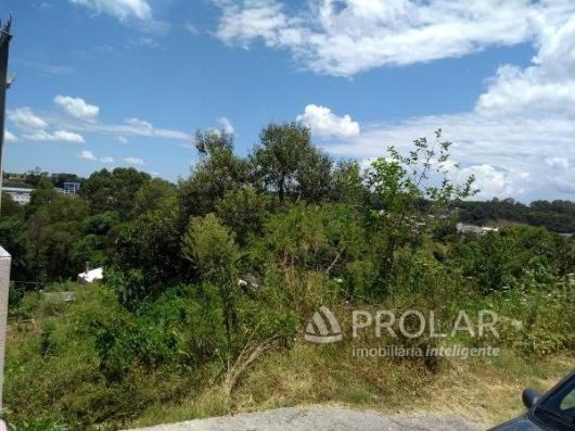 Terreno à venda em Sao roque, Bento goncalves cod:10278 - Foto 3