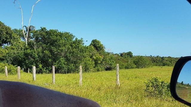 Maravilhosa Fazenda em Barrolândia, Belmonte - BA com 809 Hectares... - Foto 14