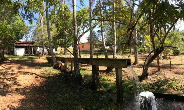Fazenda 16.5 Alqueires ( 80 ha) Aragoiânia-GO - Foto 8