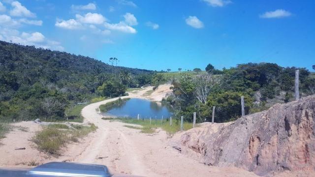 Maravilhosa Fazenda em Barrolândia, Belmonte - BA com 809 Hectares... - Foto 11