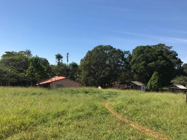 Fazenda 16.5 Alqueires ( 80 ha) Aragoiânia-GO - Foto 4