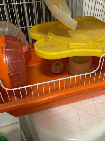 Gaiola para Hamster American Pet nova - Foto 6