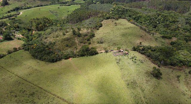 Terreno rural de 64 hectares no Sul de Minas Gerais, Baependi. (fazenda, sítio, terras) - Foto 11