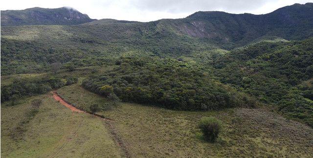 Terreno rural de 64 hectares no Sul de Minas Gerais, Baependi. (fazenda, sítio, terras) - Foto 9