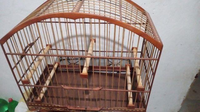 Gaiola De Passeio Para Trinca ferro , azulao  - Foto 4