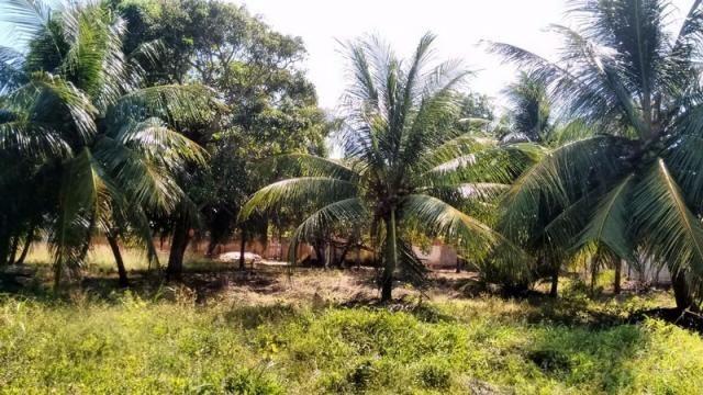 Terreno à venda em Muriú, Ceará-mirim cod:811175 - Foto 2