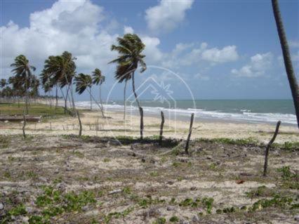 Terreno à venda em Muriú, Ceará-mirim cod:736654 - Foto 2