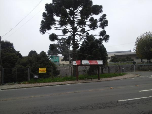 Terreno para alugar em Santa lucia, Caxias do sul cod:10765 - Foto 2