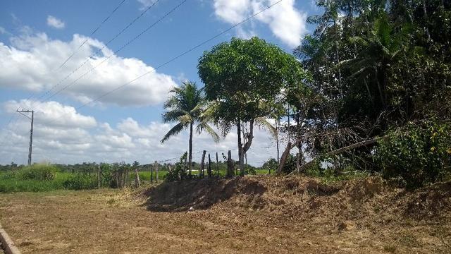 280 mil terreno com 50 x80 na Pa km 7 Castanhal- Terra Alta bom para fabrica ou galpão - Foto 10
