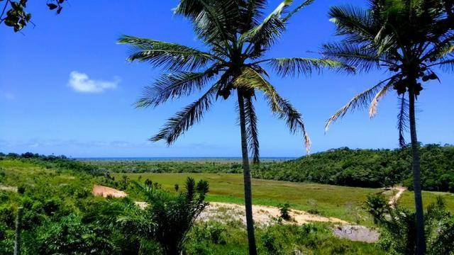 Propriedade Rural - Sul da Bahia