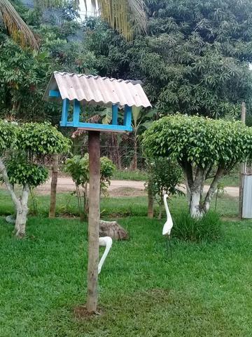 Pequena chácara em novo brasil.cariacica