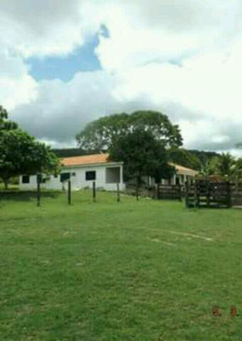 Vendo 91.1 hectare. em Miranda MS