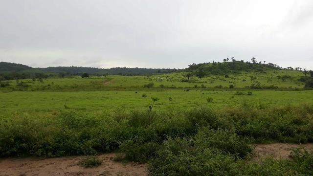 Fazenda 282 alqueires a 1 km do asfalto em açailândia - Foto 2