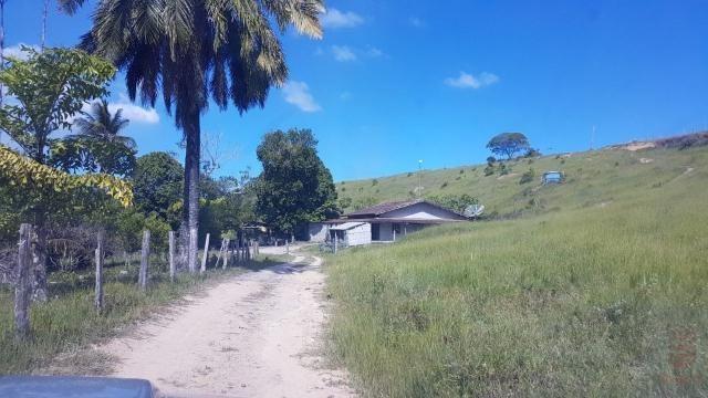 Maravilhosa Fazenda em Barrolândia, Belmonte - BA com 809 Hectares... - Foto 15