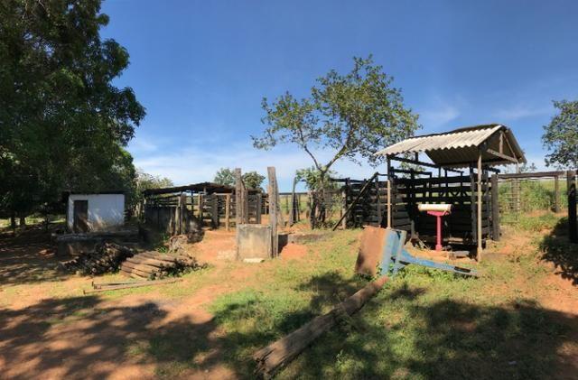 Fazenda 16.5 Alqueires ( 80 ha) Aragoiânia-GO - Foto 7