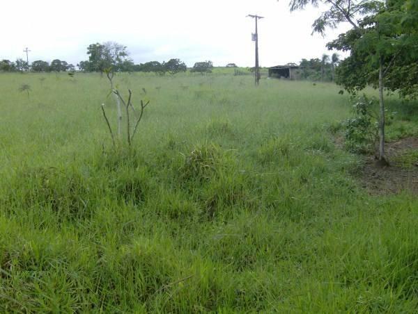 Fazenda escriturada formada ao lado de Brasília troca 61 9  * - Foto 6
