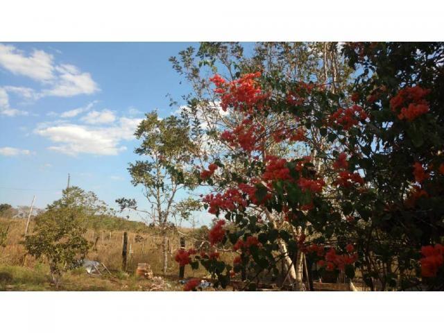 Chácara à venda em Eldorado, Cuiaba cod:22634 - Foto 7