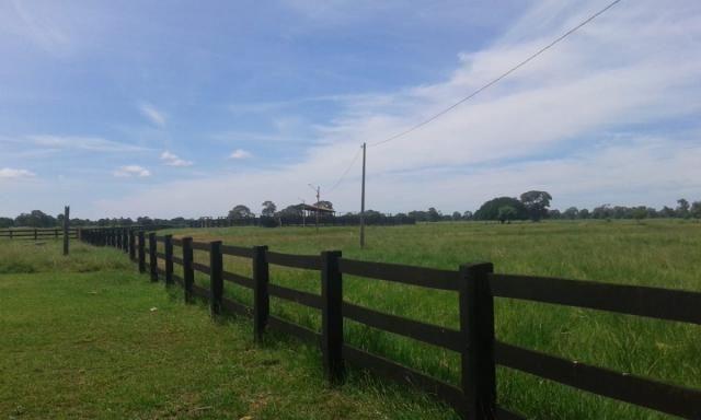 8271 | fazenda à venda em poconé mt - Foto 7