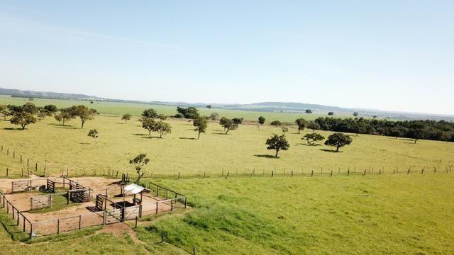 Fazenda 16.5 Alqueires ( 80 ha) Aragoiânia-GO - Foto 3