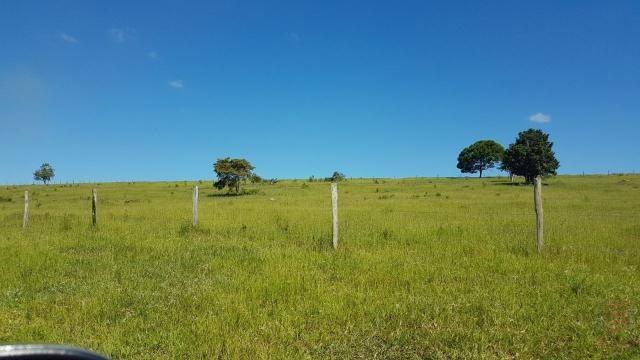 Maravilhosa Fazenda em Barrolândia, Belmonte - BA com 809 Hectares... - Foto 4