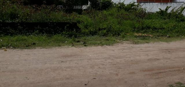 Lote em Maracaípe- Excelente metragem e localização!! Preço único!! - Foto 4