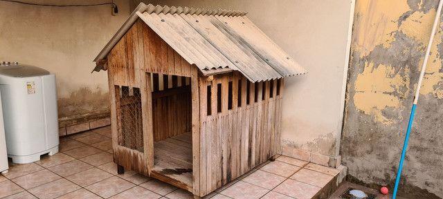 Casa de Cachorro - Foto 2