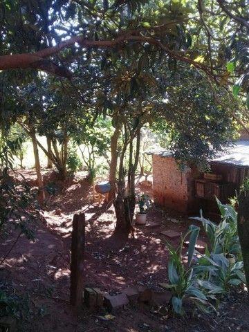 Vende-se chácara em Cruz Alta  - Foto 5