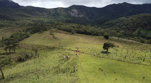 Terreno rural de 64 hectares no Sul de Minas Gerais, Baependi. (fazenda, sítio, terras) - Foto 8