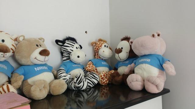 Coleção de Ursos