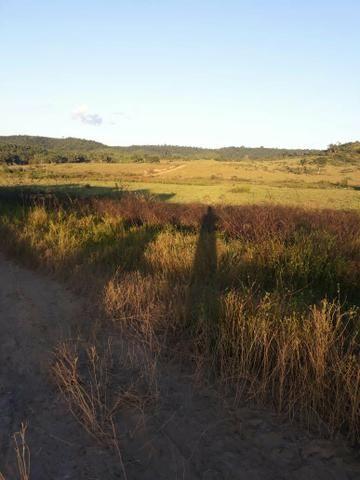 Fazenda 282 alqueires a 1 km do asfalto em açailândia
