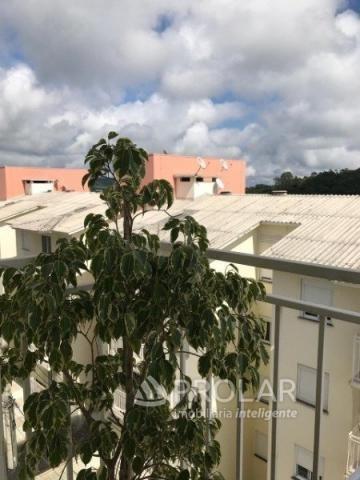 Apartamento à venda com 2 dormitórios em Aparecida, Bento gonçalves cod:10492 - Foto 8