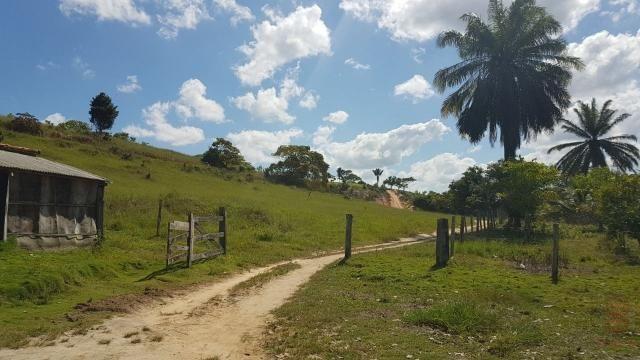 Maravilhosa Fazenda em Barrolândia, Belmonte - BA com 809 Hectares... - Foto 20