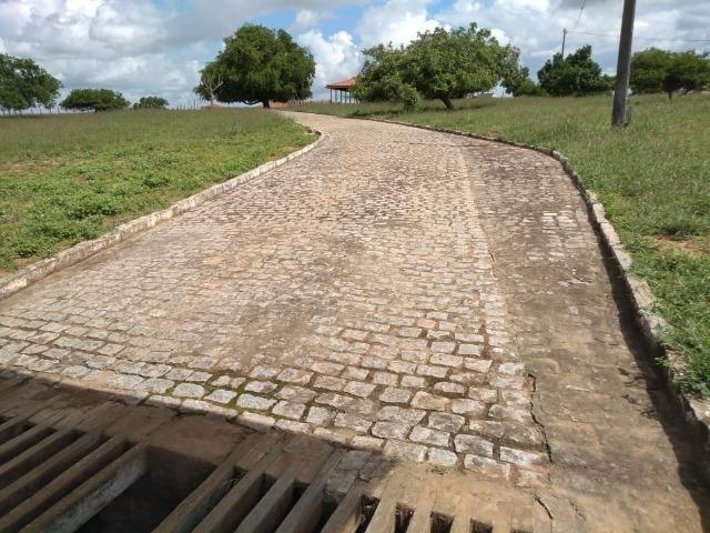 Maravilhosa fazenda na região rural de Baixa Grande Bahia, a 150 km de Feira de Santana - Foto 7