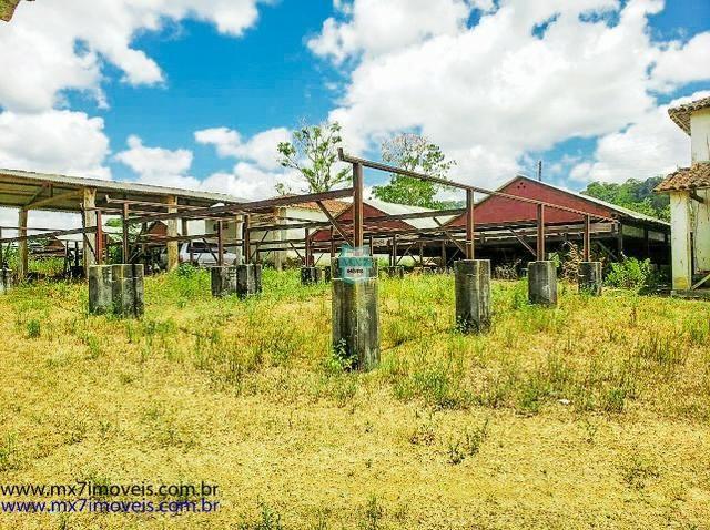 Fazenda mista de cacau e gado. Área de 203 Hectares - Foto 4