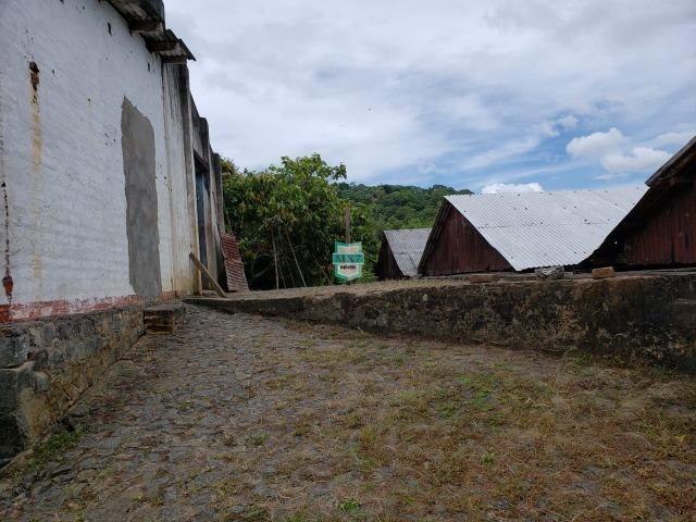 Ubaitaba. Fazenda produtiva de 139 Hectares a beira do asfalto. - Foto 3