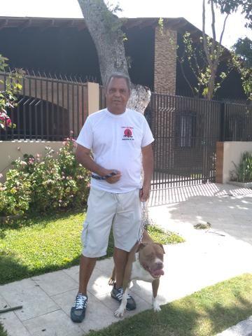 Passeador e Adestrador de cães